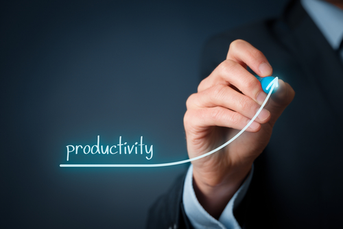 Want to Improve your Productivity? Try the SASS-E system!